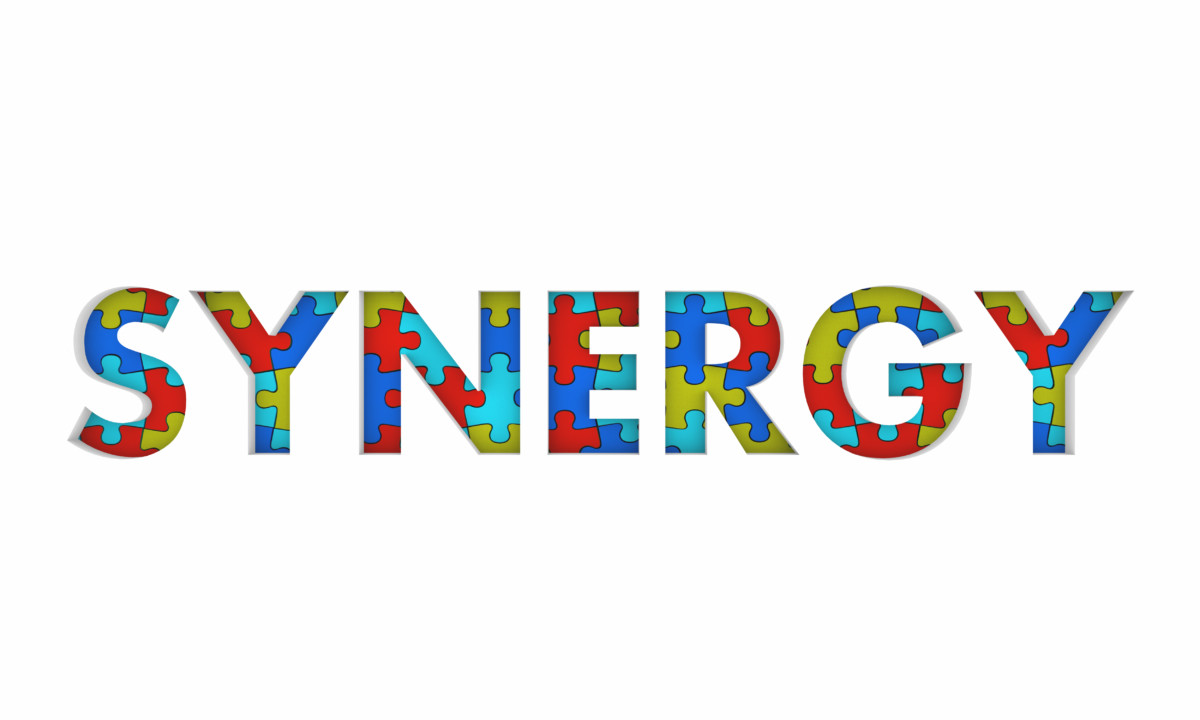 The Concept of Organizational Synergy – What Exactly it is