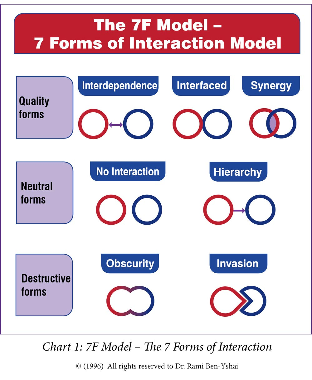 How the Concepts of Organizational Synergy and 7F Model Were Born